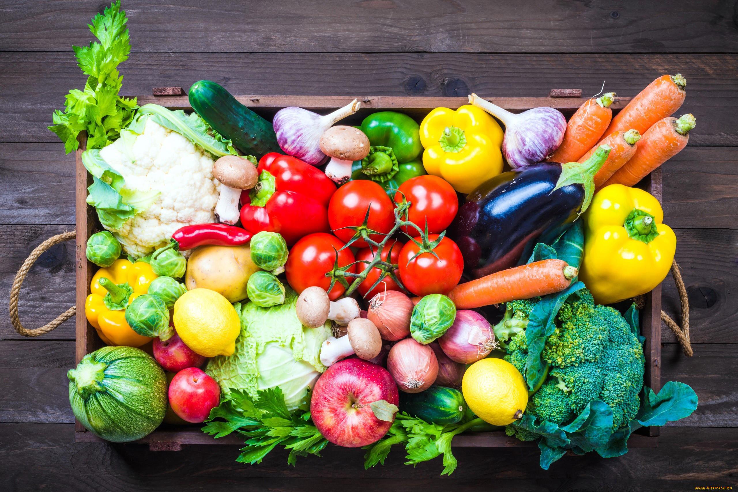 картинки еды овощи фрукты домашних животных, также